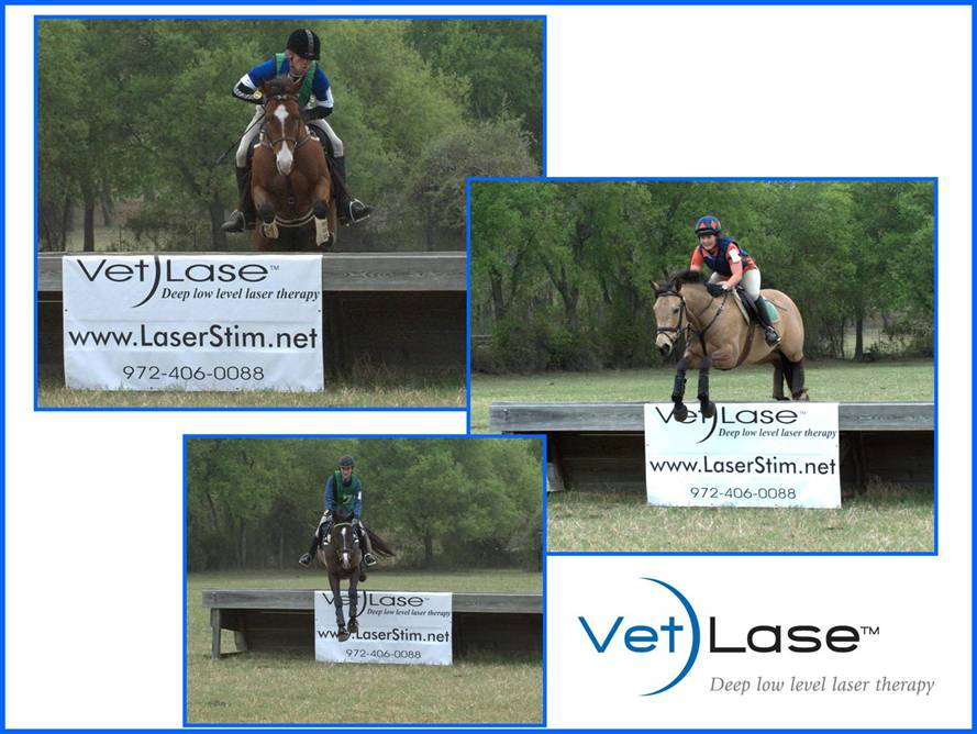 VetLase Event Sponsorship
